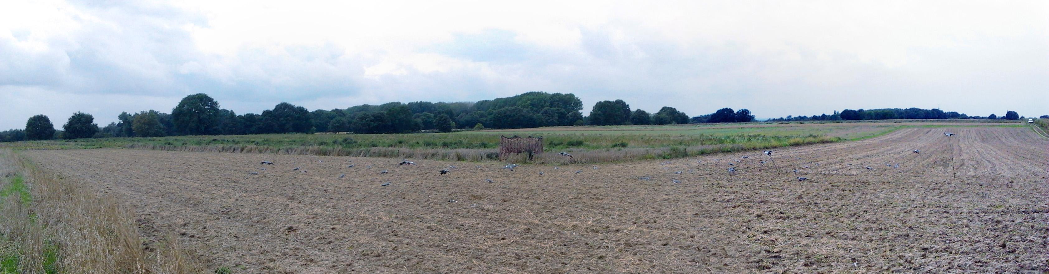 Panorama duivenjacht Kollenberg sept 2013