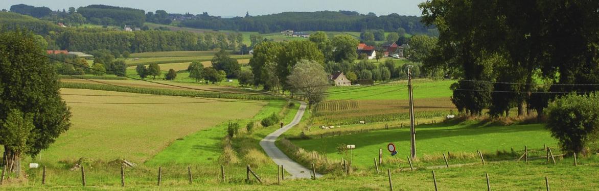 Landschap-Vlaanderen