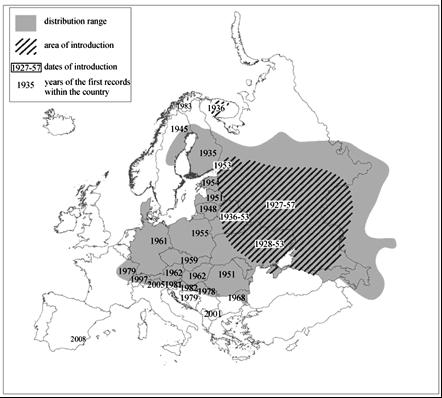 Verspreiding Wasbeerhond in Europa