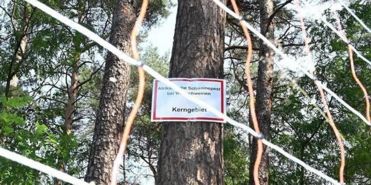 Afrikaanse Varkens Pest waarschuwingsbord Duitsland